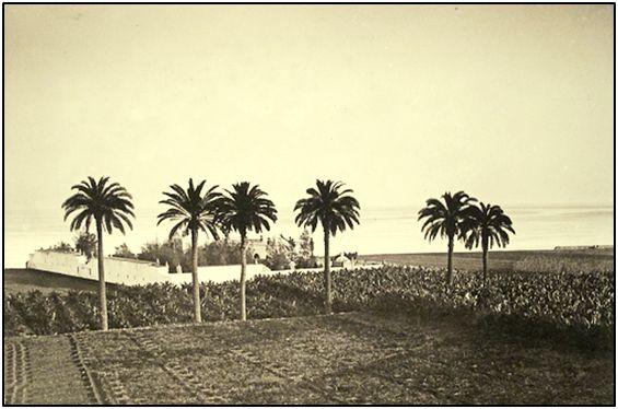 El turismo cambió de golpe el panorama canario. La emigración a Venezuela, a veces en lanchones mal dotados para la travesía oceánica, ya no tuvo razón de ser. La agricultura fue cediendo terreno al ladrillo. Escandinavia y una próspera República Federal Alemana ansiaban empaparse de sol.